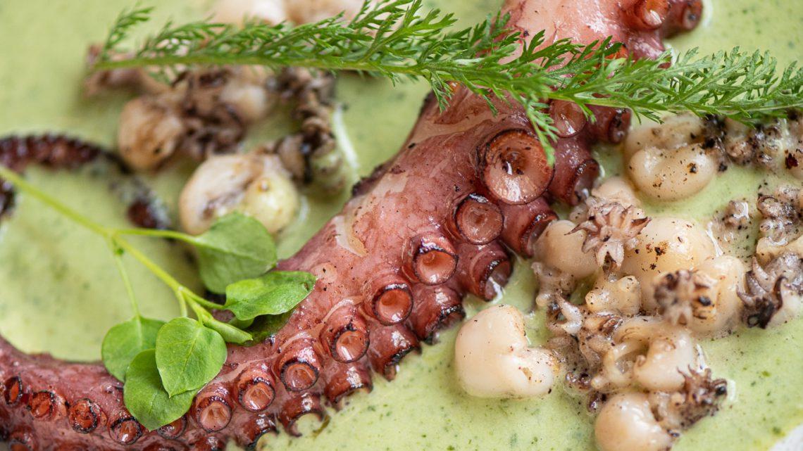 Chobotnice, syrový mořský vlk i ovocné knedlíky – zahajte léto jako opravdoví gurmáni