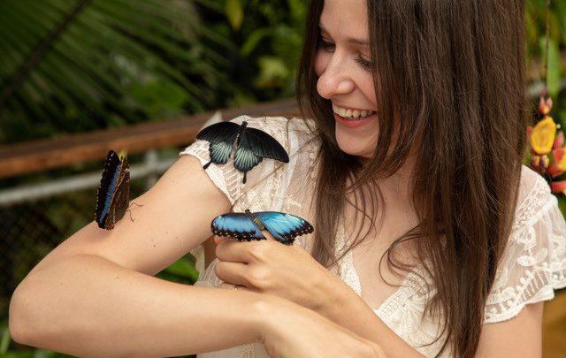 Audiopozvánka: Jedovatí motýli v Botanické zahradě v Praze pouze do 18. července!